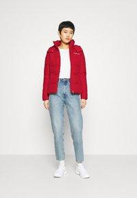 Calvin Klein Jeans - Winter jacket - red hot - 1