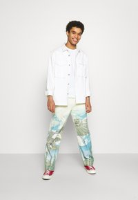 Jaded London - ALASKA LANDSCAPE SKATE - Relaxed fit jeans - multi-coloured - 1