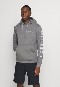 Columbia - VIEWMONTII SLEEVE GRAPHIC HOODIE - Sweat à capuche - city grey - 0