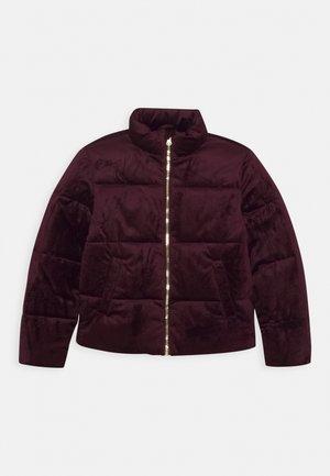 NKFMISTI JACKET - Winter jacket - winetasting