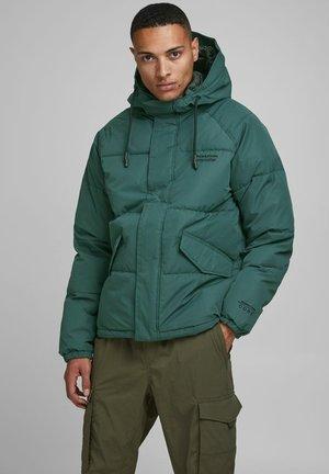 JCOTRANT - Winter jacket - darkest spruce