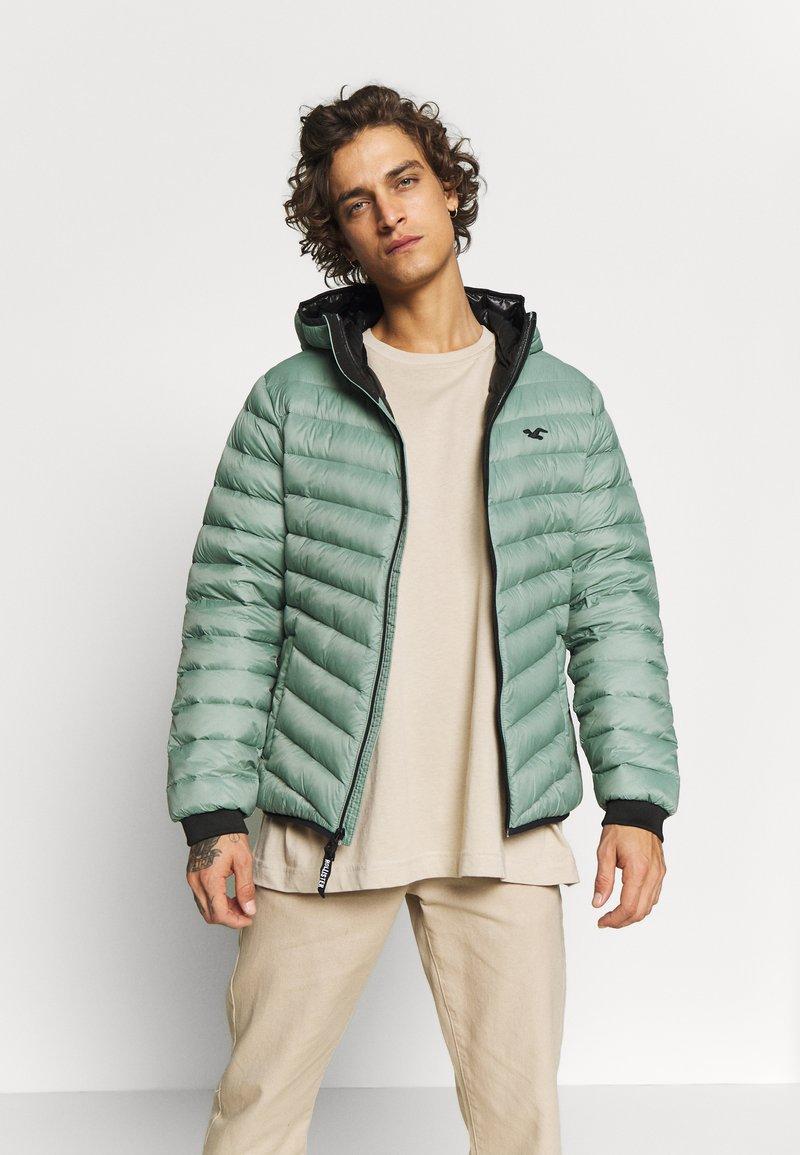 Hollister Co. - PUFFER SAGE - Down jacket - sage