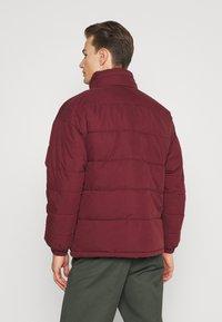 Schott - NEBRASKA - Winter jacket - bordeaux - 2