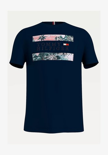 HAWAIIAN FLAG - Print T-shirt - desert sky