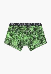 Bonds - TRUNK 3 PACK - Panties - green - 2