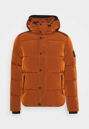 CRINKLE  - Winter jacket - brown