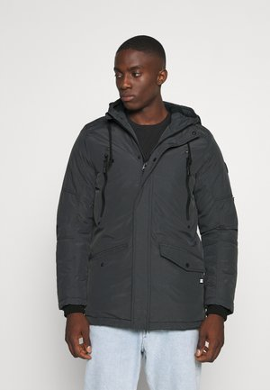 AOSTA TASLON - Winter jacket - antra