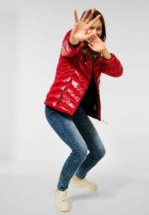 STEPP OPTIK - Winter jacket - rot