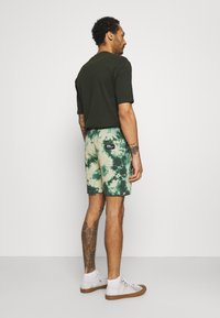 Redefined Rebel - COBY - Shorts - mountain view - 2