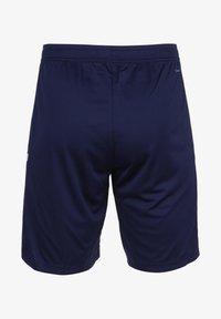 adidas Performance - TEAM 19 TRAININGSSHORT HERREN - Sports shorts - navy blue / white - 1