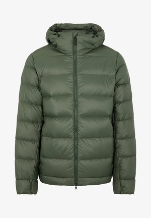 ROSS - Down jacket - thyme green