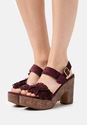YANELA - Sandály na platformě - zeus grape/shana red