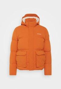 MADDOX   - Down jacket - bombay brown