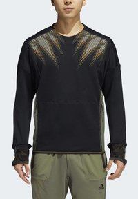 adidas Performance - DESIGNED4TRAINING COLD.RDY SPORTS PULLOVER - Sweatshirt - black - 2