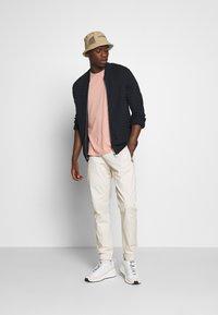 Tommy Jeans - SCANTON JOGGER DOBBY PANT - Pantalon de survêtement - light silt - 1