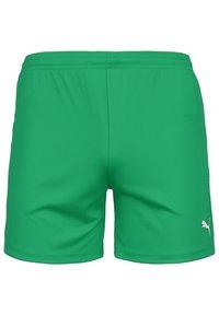 Puma - TEAMGOAL 23 KNIT TRAININGSSHORT DAMEN - Sports shorts - pepper green - 0