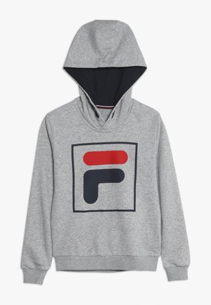 HARRY UNISEX - Hoodie - light grey melange