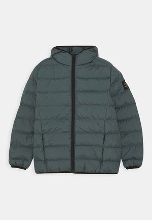 JACKET KIDS UNISEX - Winter jacket - green shadow