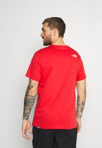 The North Face - NATURAL WONDERS TEE VINTAGE - Print T-shirt - rococco red - 2
