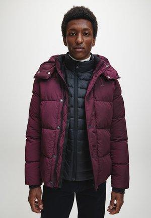 CRINKLE  - Winter jacket - winetasting