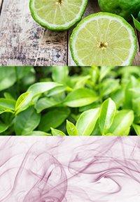 Calvin Klein Fragrances - CK ONE DEODORANT STICK - Dezodorant - - - 1