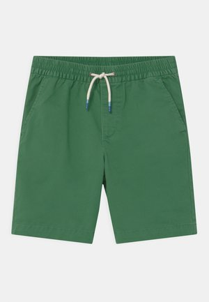 BOY EASY - Shorts - island palm