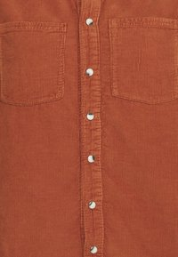 BDG Urban Outfitters - WESTERN SHIRT - Button-down blouse - gingerbread - 6