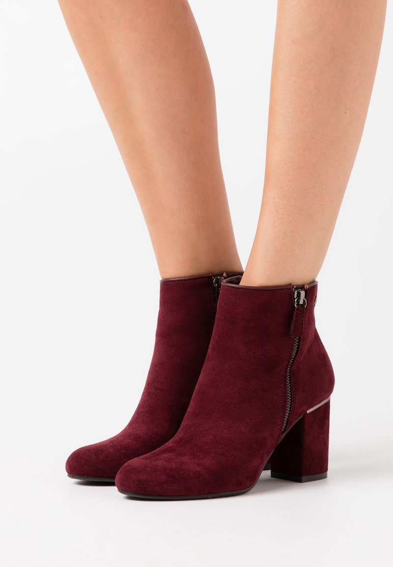 XTI - Ankle boots - burgundy