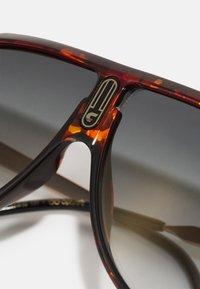 Carrera - UNISEX - Aurinkolasit - brown - 4