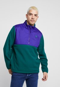 adidas Originals - WINTERIZED HALF-ZIP TOP - Fleecetrøjer - coll green / coll purple / solar green / ref silver - 0