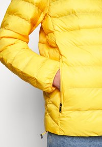 Polo Ralph Lauren - TERRA JACKET - Jas - yellowfin - 6