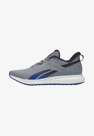 FOREVER FLOATRIDE ENERGY 2.0 SHOES - Obuwie do biegania treningowe - grey