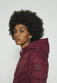 Hollister Co. - Winter coat - burgundy - 4