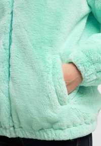 taddy - Winter jacket - mint - 3