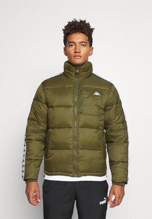 HEROLD  - Winter jacket - winter moss