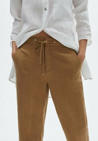 Massimo Dutti - Trousers - brown - 2