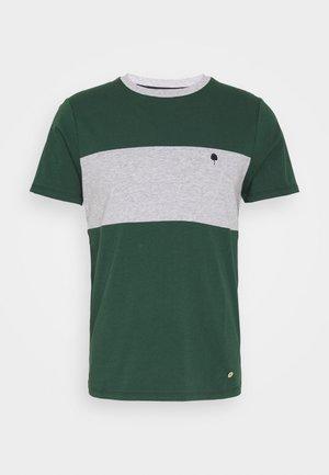 ARCY UNISEX  - T-shirt z nadrukiem - mottled light grey/green