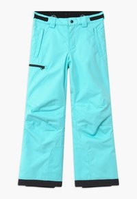 Reima - WINTER TERRIE UNISEX - Snow pants - light turquoise - 2