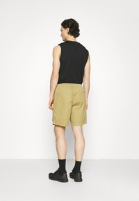 Element - VACATION - Shorts - canyon khaki - 2