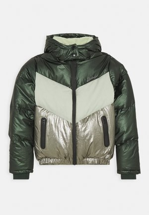 JOY - Winter jacket - pine green