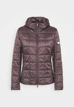 PITTORE - Winter jacket - malva