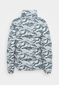 The North Face - LIBERTY SIERRA JACKET - Down jacket - light grey - 2
