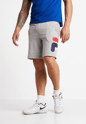 ROBERT - Short de sport - light grey melange