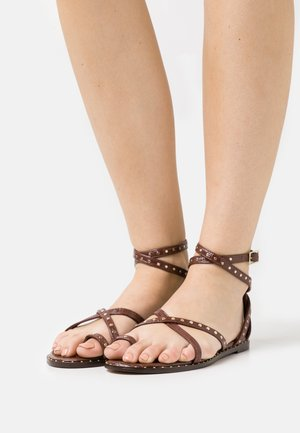 MATHAR - Sandalias de dedo - dark brown