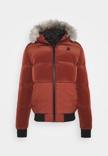 DISTANCE JACKET - Winter jacket - red