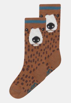 BEAR KNEE HIGH 2 PACK UNISEX - Podkolenky - multi-coloured
