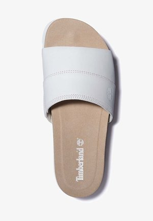 Pool slides - white