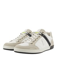 Gaastra - WILLIS PUL - Trainers - white - 3