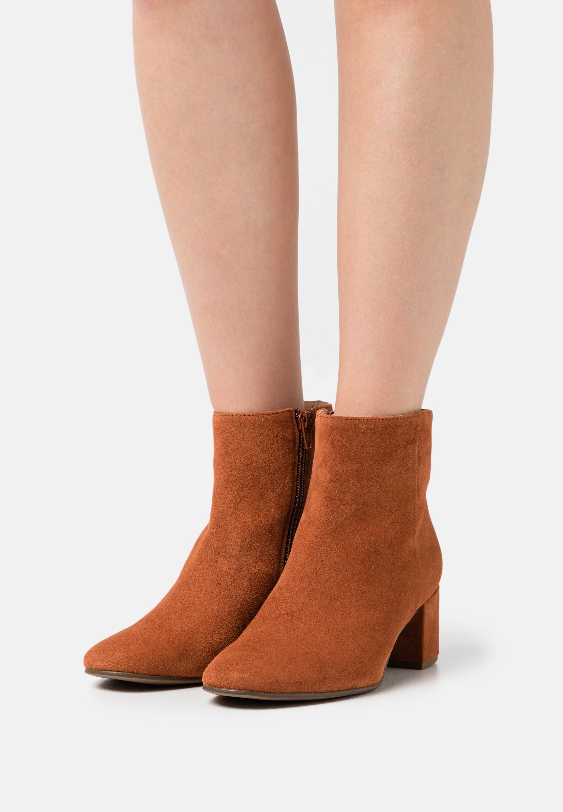 Women DAYDREAM - Classic ankle boots