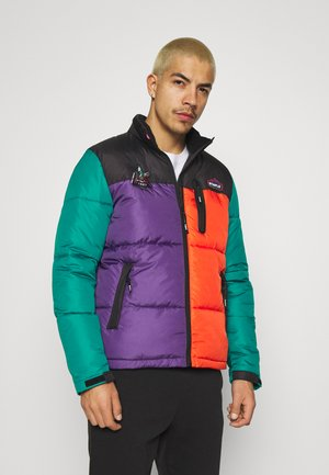 OUTDOOR PUFFER JACKET - Winter jacket - black